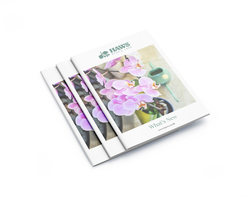 Haws Watering Cans - What's New brochure - cover